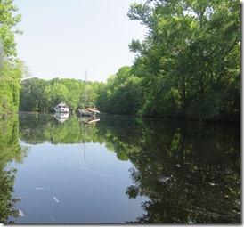 Dismal Swamp (5)