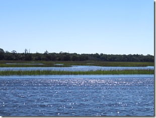Nav Fernandina-Charleston (2)