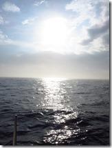 Sandy Hook (2)