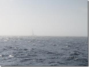 Sandy Hook (3)