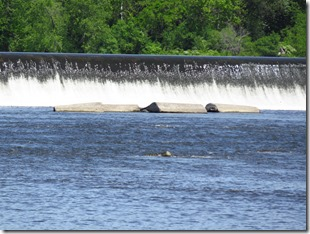 Canal Champlain (13)